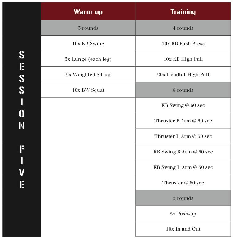 kettlebell fatloss training system