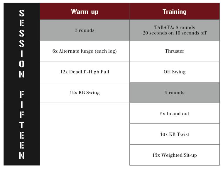 kettlebell workout system